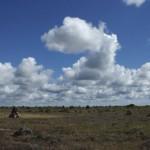 旅写真 世界遺産・アルバート地帯