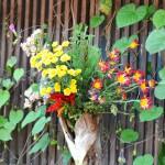 妻籠宿のお店の花々