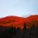 紅葉と思ってしまうほど赤い夕焼けの山