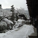 今年最初の大雪in妻籠宿