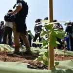 平成28年度・木曽郡植樹祭が開催されました