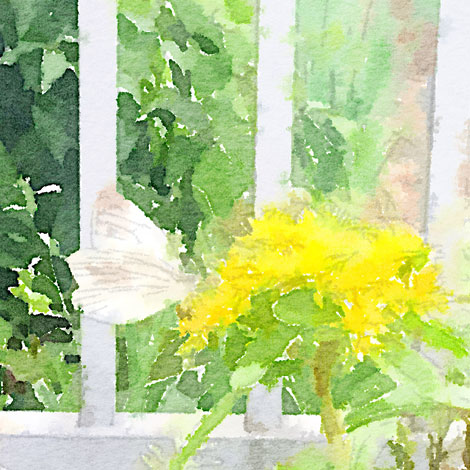 Painted-in-Waterlogue_20140704163944eef.jpg